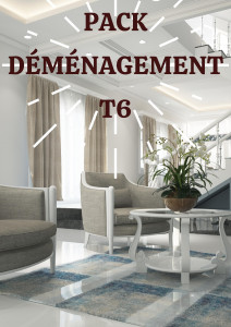 PACK DÉMÉNAGEMENT T6